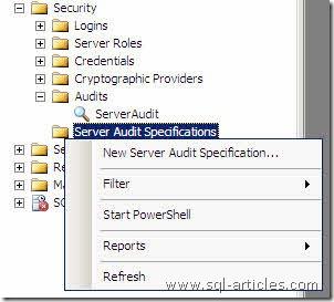 Audit_SQL2008_10