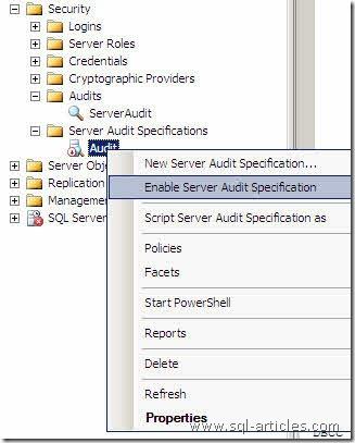 Audit_SQL2008_12